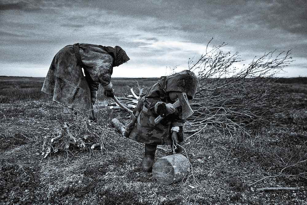 Sept 2009 Yamal Peninsula, Siberia, Russia - global warming impacts story on the Nenet people , reindeer herders in the Yamal Peninsula
