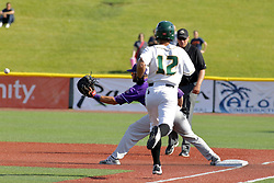 28 May 2017: Chirino Santiago gets thrown out on his way to 1st during a Frontier League Baseball game between the Lake Erie Crushers and the Normal CornBelters at Corn Crib Stadium on the campus of Heartland Community College in Normal Illinois