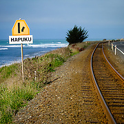 The road to Hapuku...is paved with surf. South Island, New Zealand. Photo by Jen Klewitz