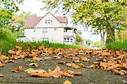 Photos taken of houses for Cleveland Magazine on October 1 2014.