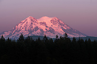 Pink sunset on Mount Rainier