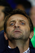 Tim Sherwood Manager of Tottenham Hotspur looks on and before the UEFA Europa League match at White Hart Lane, London<br /> Picture by David Horn/Focus Images Ltd +44 7545 970036<br /> 27/02/2014