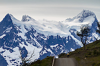 Cyclist biking towards the magnificent mountains in the Torres del Paine national Park, Patagonia, Chile