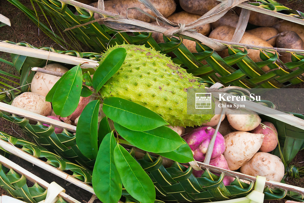 Hand bags made of palm tree leaves carrying breadfruit and sweet potatoes, Yap Island, Federated States of Micronesia