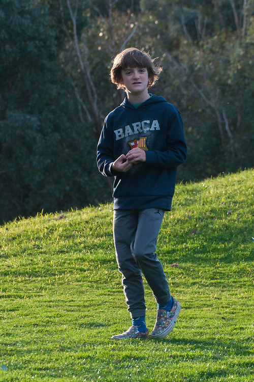 Max, Eltham College Environmental Reserve, Research, Victoria, Australia