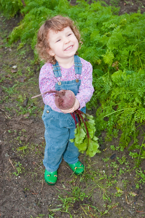 A little girl smiles with her beet in the garden. MR MRA