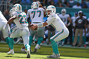 Sunday, October 13, 2019; Miami Gardens, FL USA;  Miami Dolphins quarterback Josh Rosen (3) fakes the handoff during an NFL game against Washington at Hard Rock Stadium. The Redskins beat the Dolphins 17-16. (Kim Hukari/Image of Sport)