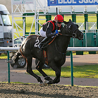 Divine Rule and Charlotte Jenner winning the 1.10 race