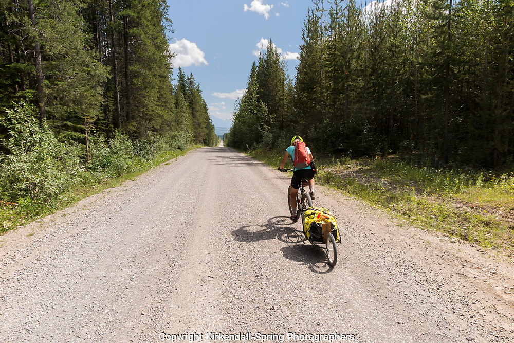 BC00622-00...BRITISH COLUMBIA - Vicky Spring cycling on the Elk River Road along the Great Divide Route.