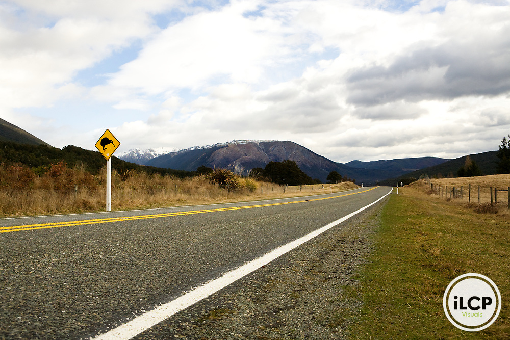 Brown Kiwi (Apteryx australis) road crossing sign, South Island, New Zealand