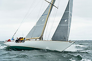 Wild Horses sailing in the Opera House Cup regatta.