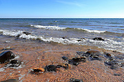 The waves coming ashore from Lake Superior at Pt. Isabelle, in the Bete Grise Preserve, can be gentle, or ferocious. This is some of the most crystal-clear water I have ever seen.