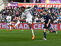 Football - 2017 / 2018 FA Cup - Quarter-Final: Swansea City vs. Tottenham Hotspur<br /> <br /> Tammy Abraham of Swansea City attacks in the box , at The Liberty Stadium.<br /> <br /> COLORSPORT/WINSTON BYNORTH