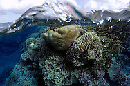 Split image of pristine coral reef and  sky, Rongelap, Marshall Islands, Micronesia