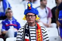 Tifoso Francia Supporters France <br /> Marseille 15-06-2016 Stade du Velodrome <br /> Football Euro2016 France - Albania / Francia - Albania Group Stage Group A<br /> Foto Massimo Insabato / Insidefoto