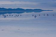 Piles of salt made by salt miners, dry during the rainy season in the Salar de Uyuni, Potosi, Bolivia