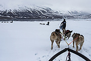 Dog sledding<br /> Longyearbyen<br /> Svalbard<br /> Norway<br /> Arctic Ocean