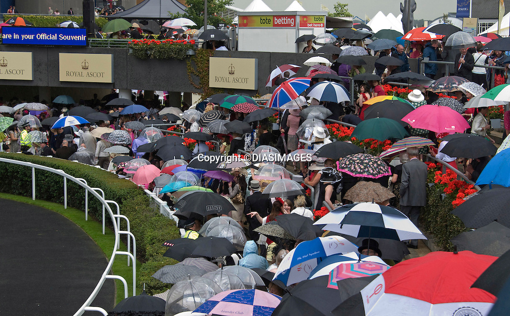 "UMBRELLAS ON LADIES DAY.Royal Ascot, the premier race event of the calendar, Ascot_16/11/2011.Mandatory Credit Photo: ©DIAS-DIASIMAGES..**ALL FEES PAYABLE TO: ""NEWSPIX INTERNATIONAL""**..IMMEDIATE CONFIRMATION OF USAGE REQUIRED:.DiasImages, 31a Chinnery Hill, Bishop's Stortford, ENGLAND CM23 3PS.Tel:+441279 324672  ; Fax: +441279656877.Mobile:  07775681153.e-mail: info@newspixinternational.co.uk"