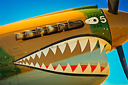 "Fully restored P-40 ""Warhawk"" displaying the famous ""Flying Tigers"" paint scheme.  Airventure 2008, Oshkosh, Wisconsin."