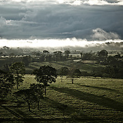 Brume pâturages et forêt   Neblinha, pastagens e Floresta