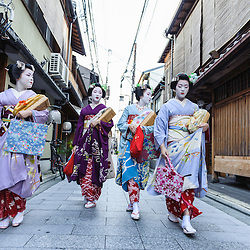 Group of maiko women going to work, Kyoto, Japan
