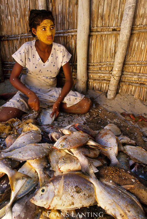 Vezo girl preparing fish for market, Western Madagascar