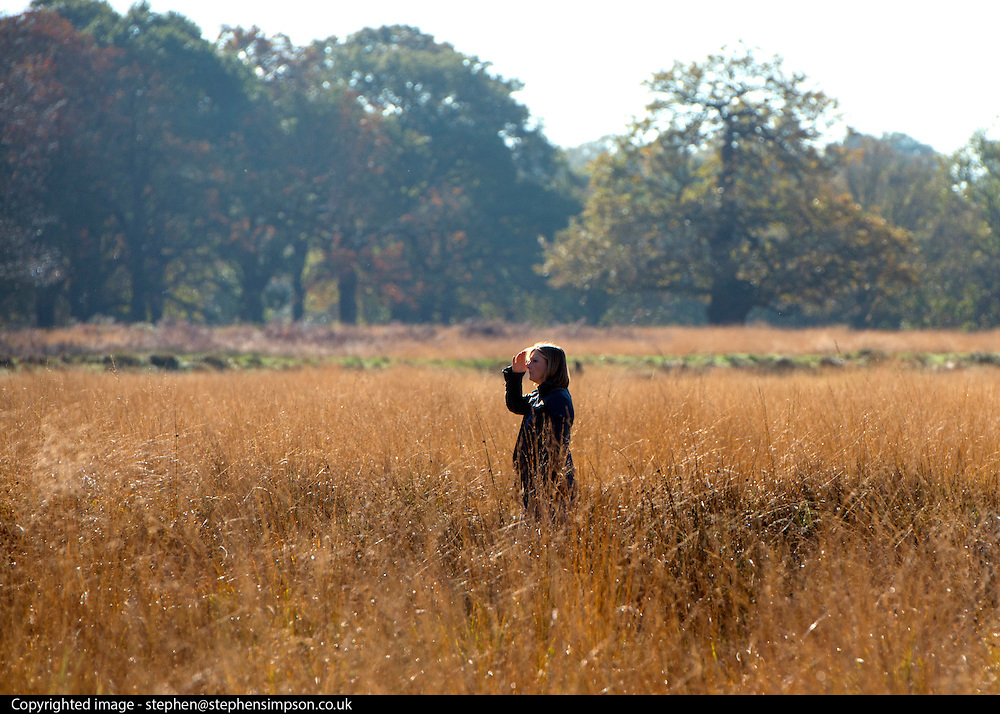 © Licensed to London News Pictures. 04/11/2014. Richmond, UK. A woman walks through the autumnal grasses and trees.  People and animals enjoy the warm sunshine in Richmond Park, Surrey today 4th November. Britain has experienced unseasonably warm weather recently.  Photo credit : Stephen Simpson/LNP