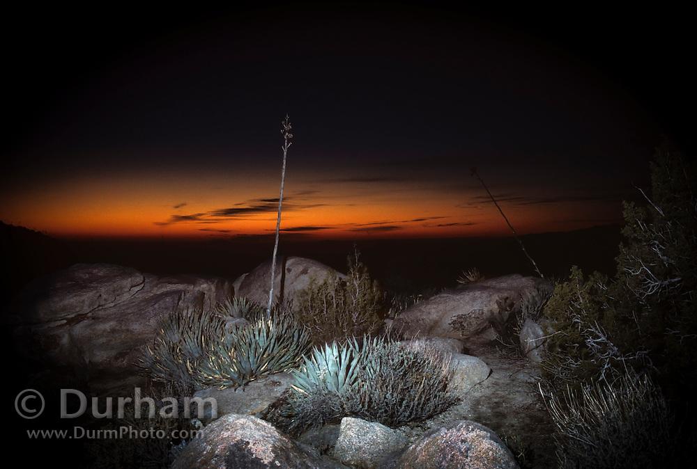 Desert Sunrise. Anza-Borrego Desert State Park, California. Sonoran Desert.