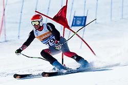 LUJAN Jonathan, USA, Giant Slalom, 2013 IPC Alpine Skiing World Championships, La Molina, Spain