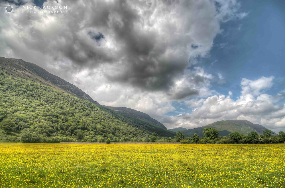 Much is noted, and rightly so, about the beauty of Buttermere Lake in the Lake District, but this view is less frequently highlighted. It was taken with my back to the lake looking at the Lake District hills with a beautiful sea of buttercups in the foreground.