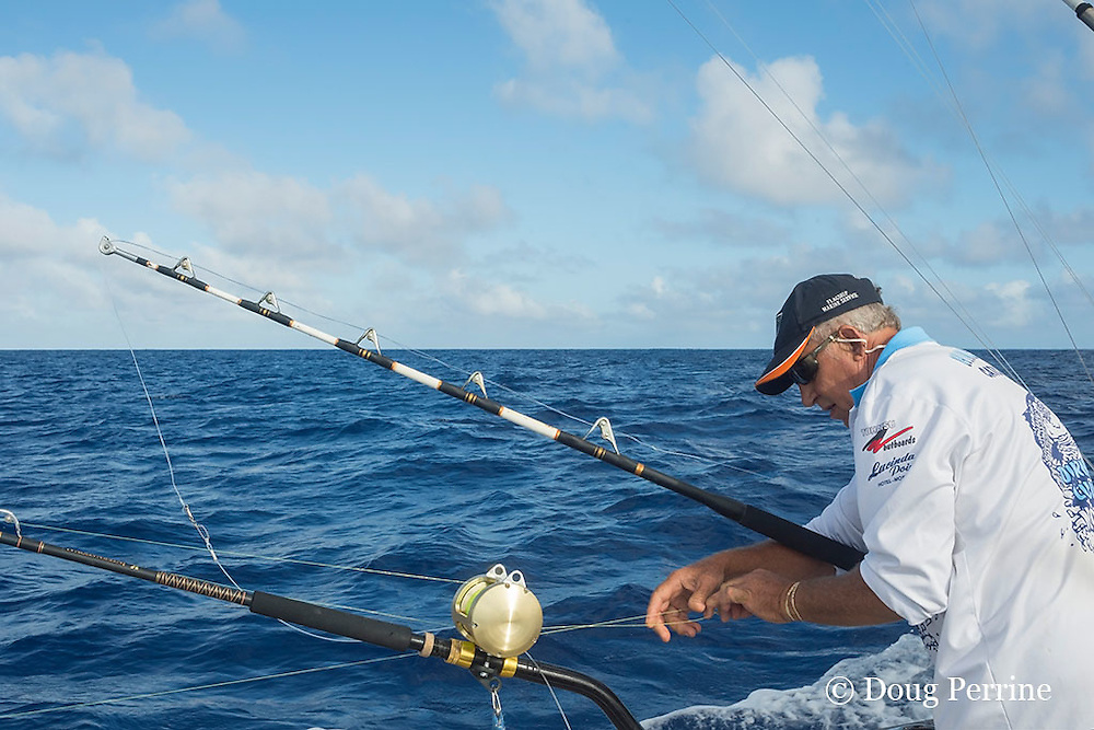deckhand Walter Morehead rigs lines on charter boat Reel Addiction, Vava'u, Kingdom of Tonga, South Pacific