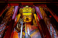 A giant Buddha statue, Tashilhunpo Monastery, Shigatse, the second largest city in Tibet (Xizang), China.