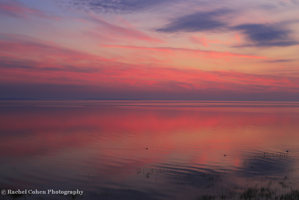 &quot;Morning in Pink&quot;<br /> <br /> Sunrise over Lake Huron as viewed from St. Ignace Michigan in the Upper Peninsula!! <br /> <br /> Sunrise Images by Rachel Cohen