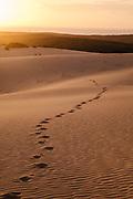 Sand dunes on Bazaruto Island