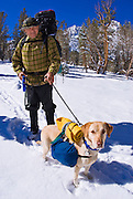 Backpacker and dog in Little Lakes Valley after an early storm, John Muir Wilderness, Sierra Nevada Mountains, California