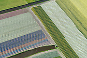 Nederland, Zuid-Holland, Bollenstreek, 09-04-2014; Bloembollenvelden tussen Noordwijkerhout, Lisse en Sassenheim.<br /> Door de extreem zachte winter staan bollenvelden begin april 2014 al in bloei. <br /> Dutch pride in the spring: the tulip fields in Lisse and environment.<br /> Due to the extremely mild winter, the bulbs are already in bloom in early April 2014<br /> luchtfoto (toeslag op standard tarieven);<br /> aerial photo (additional fee required);<br /> copyright foto/photo Siebe Swart