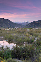 San Gabriel River with Mount Baldy in the Background, California