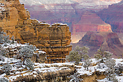 Fresh snow has blanketed the upper reaches of the Grand Canyon.