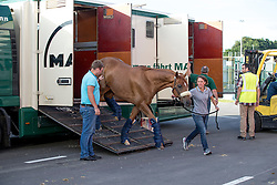 Team Germany<br /> Departure of the horses to the Rio Olympics from Liege Airport - Liege 2016<br /> © Hippo Foto - Dirk Caremans<br /> 30/07/16
