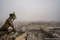 Gargoyle perched atop the famous Notre Dame Cathedral.<br /> <br /> Available Sizes: 7x11, 13x19, 16x24