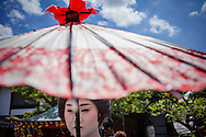 Toshiyu,geisha.Geisha's distric of Miyagawacho.Kyoto. Kansai, Japan.