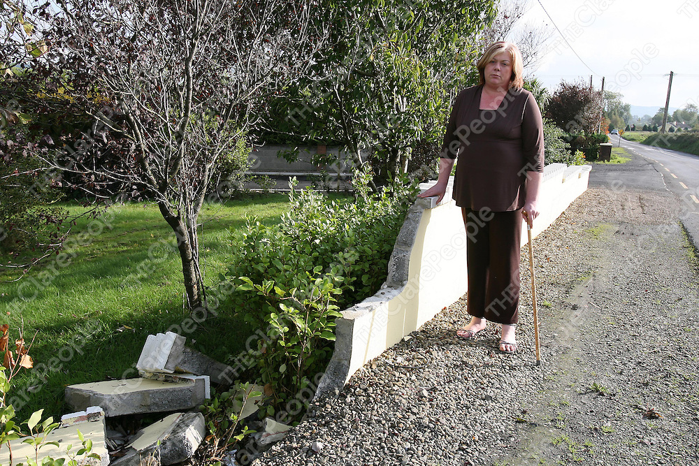 Mairead Guest outside her wall which has been repeatedly knocked by cars on the Kilmurry- Sixmilebridge road.<br />