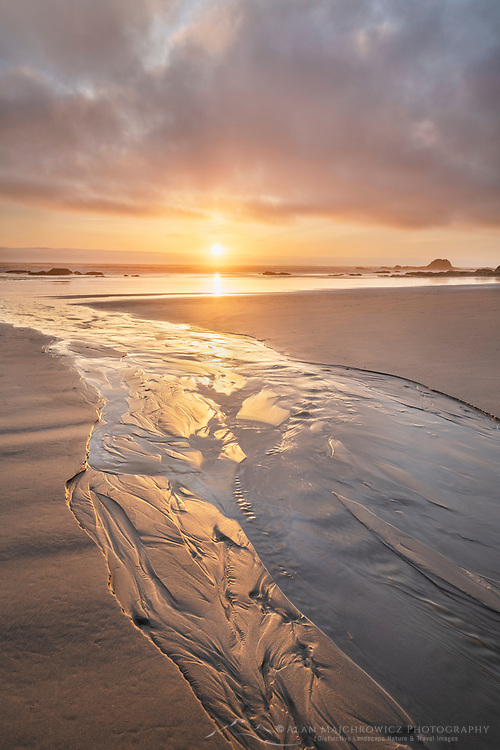 Stream flowing into the Pacific Ocean at sunset, Kalaloch Beach Olympic National Park Washington