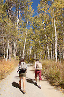 Two hikers on path through woodland