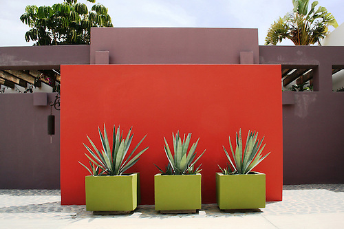 Warm Welcome To A Mexican Home With Abundance Of Colors In Walls And  Plants. Photo.