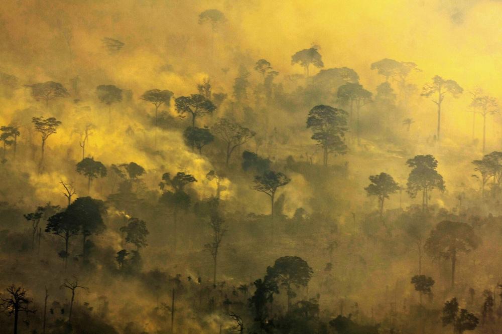 """Alta Floresta, Mato Grosso 24 08 2008  Desmatamento e queimadas em áreas protegidas no norte do Mato Grosso e ao sul do Pará no Parque Nacional do Jamanxim. A série """"Uma certa Amazônia"""" realizada durante a primeira década do século  21, quando os eventos extremos de cheia e vazante na Amazônia revelaram que algo de muito errado está acontecendo com o clima do planeta. Mudanças cada vez mais drásticas no regime das águas da bacia dos rios Negro e Solimões provocaram impactos como a fome, sede, doenças e mortandade de animais. O cotidiano das populações tradicionais e a paisagem amazônica mudaram definitivamente. Uma situação de extremos, onde as vazantes estão, a cada ano, se transformando em catástrofes e as cheias mostrando-se cada vez mais trágicas. Este cenário que a cada vez mais perde áreas de florestas para o agronégocio, principalmente  as plantações de soja e milho, assim como a criação de gado, além da pressão sofrida pela industria madereira em áreas de preservação permanente e também em terras indígenas, além  da exploração mineral e a ameaça pelas grandes obras de infra-estrutura do governo brasileiro fazem da Amazônia um dos ecossistemas mais frágeis perante a ação do homem."""