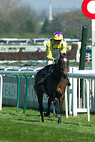 National Hunt Horse Racing - 2017 Randox Grand National Festival - Saturday, Day Three [Grand National Day]<br /> <br /> David Noonan wins on Fountains Windfall in the 1st race the 1.45 Gaskells Handicap Hurdle at Aintree Racecourse.<br /> <br /> COLORSPORT/WINSTON BYNORTH