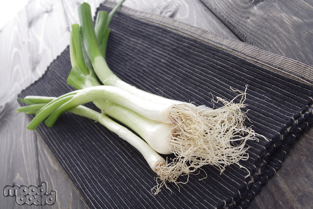 Composition of leeks lies on cloth