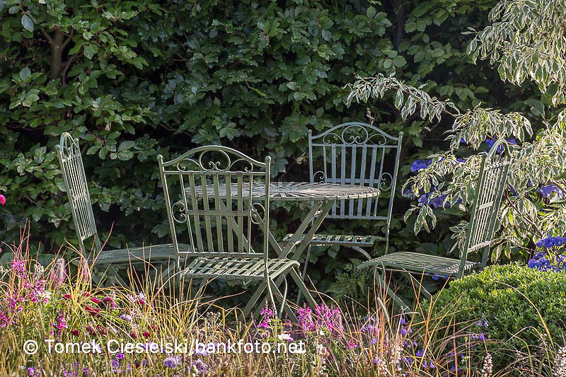 Metal antique furniture against the fagus hedge