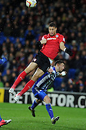 Cardiff city's Rudy Gestede goes close to scoring with a late header. . NPower championship, Cardiff city v Sheffield Wednesday at the Cardiff city Stadium in Cardiff on Sunday 2nd Dec 2012. pic by Andrew Orchard, Andrew Orchard sports photography,